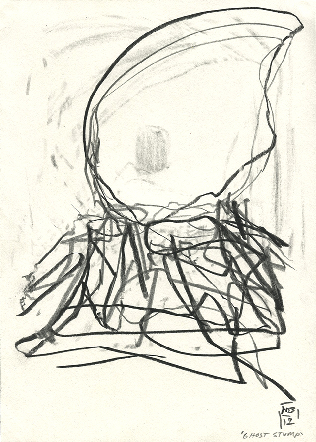 Ghost Stump, 2019 Michael Markwick Graphitstift und Kreidestift auf Papier 29,5 x 20,8 cm Graphite and Conté crayon on paper, 1,6 x 8,2 inches